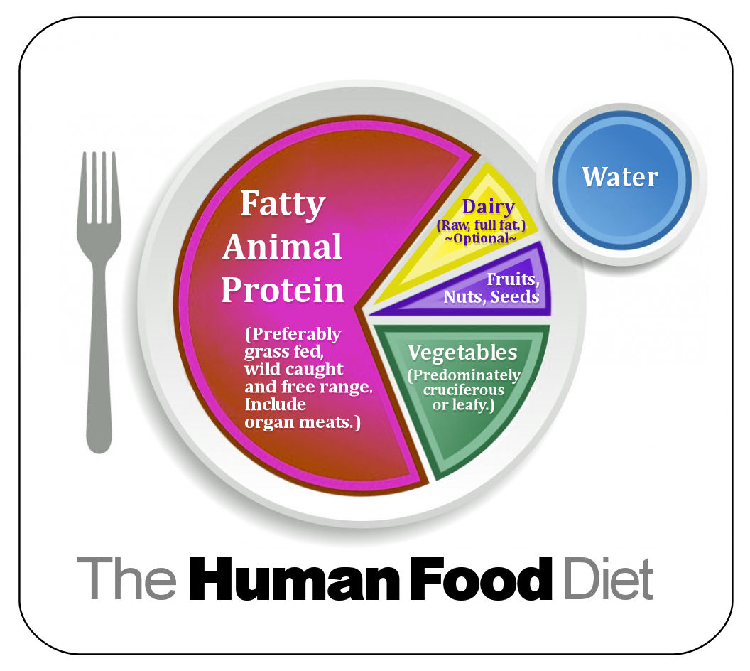 The Human Food Diet Plate